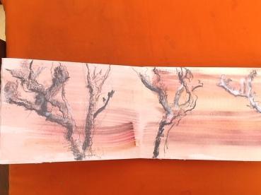 Anna's trees