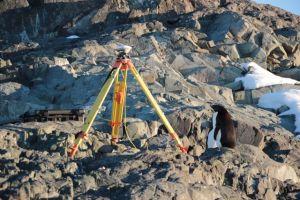 13a.GPS:penguin