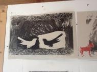 Jill's birds