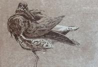 Nik Pollard woodcut