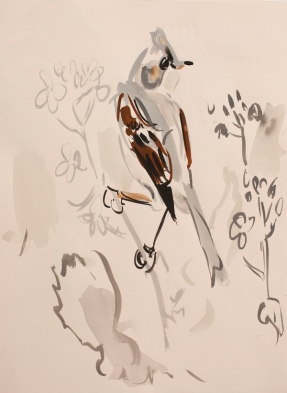 NPR01 Nik Pollard Whitethroat series 1 Gouache 34 x 25.5cm _web