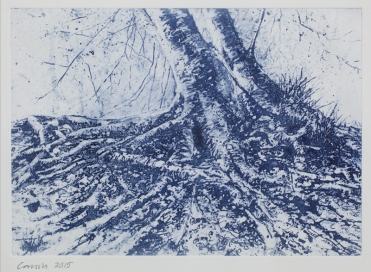 Amanda Cornish, 'Twin Roots', Photopolymer Gravure