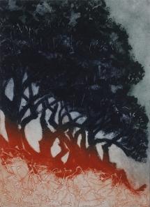 Arran Miles, 'Corsican Pines', Collagraph