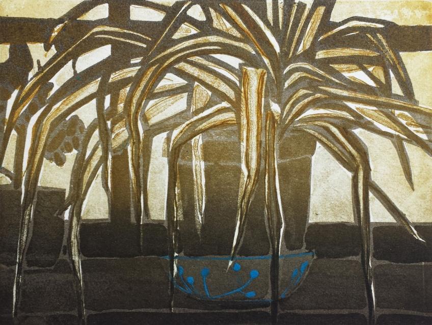 Katherine Jones, Spider Plant, 2016, Sugarlift aquatint etching, 31 x 37cm, Plate size 14.7 x 19.7cm, Edition 25, Tulse Hill Portfolio