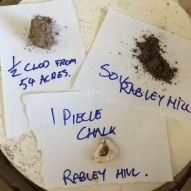Rabley samples prior to 1000c firing.